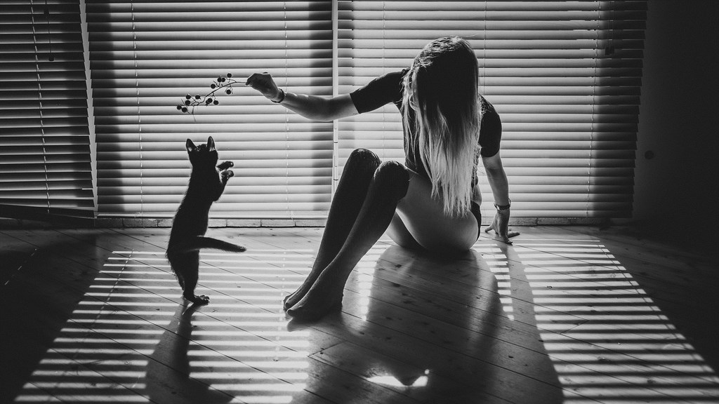 jeu-ombres-lumiere-femme-chat-hd-wallpapers.jpg